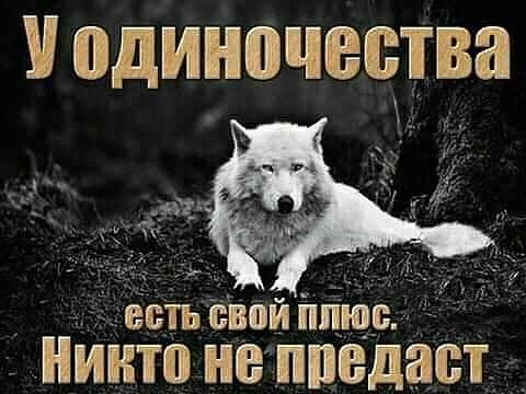 IMG_20190704_200712